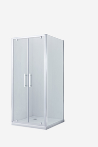 Душевая дверь SSWW LD60-Y22 1200х1950