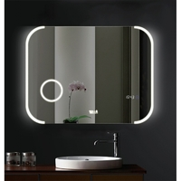 Зеркало в ванную комнату WeltWasser WW BZS FRANK 8060-4B